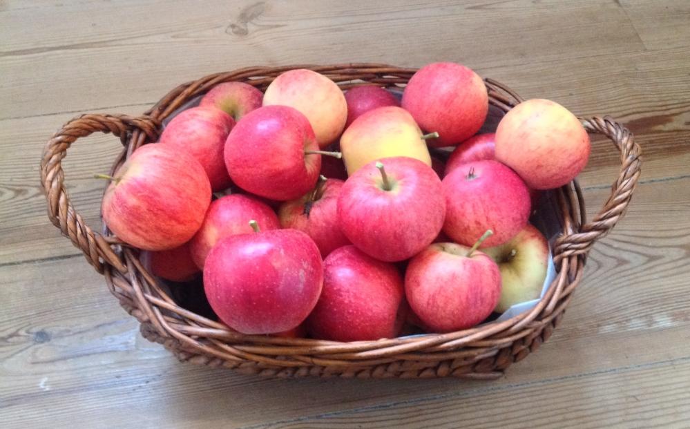 Rød aroma æbler